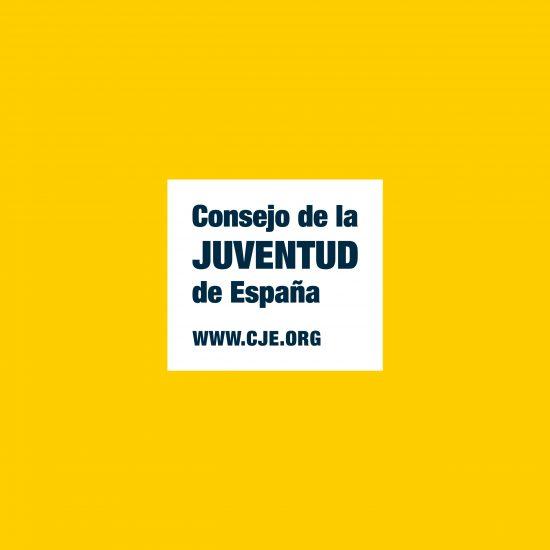 Vestida de flores - Diseño de la Identidad Corporativa para el Consejo de la Juventud de España